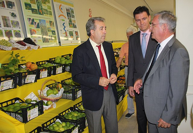 Cerdá anima al sector agrícola a desarrollar trabajos en investigación para obtener productos