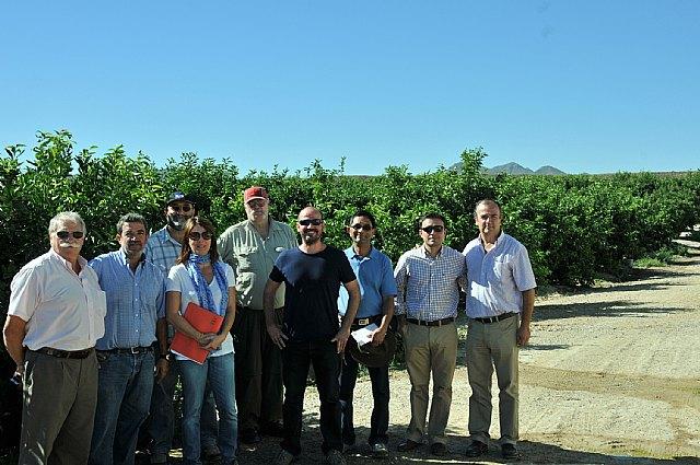 Los inspectores fitosanitarios de EEUU se muestran satisfechos con el buen estado de los cítricos de la Región de cara a la exportación, Foto 1