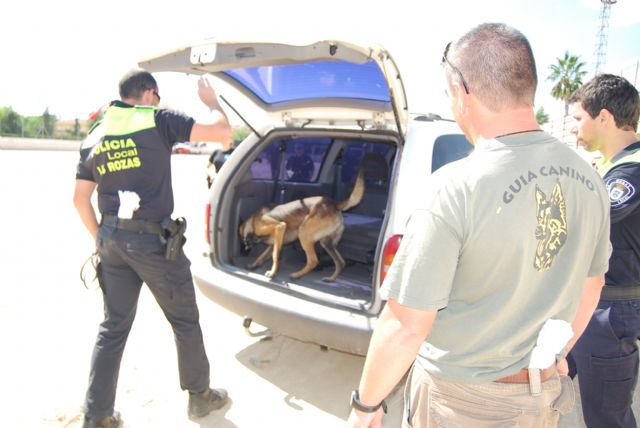 The Canine Unit Meeting of the Local Police focuses its training sessions in the detection of drugs and explosives
