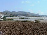 Hasta el día 17 se pueden pedir ayudas por daños en explotaciones agrícolas de Mazarrón causados por las lluvias de 2009