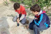 Los escolares de Alguazas reforestan la Vía Verde del Noroeste