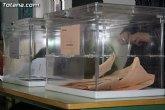 La participación de electores en las elecciones generales en el municipio de Totana asciende al 43,41 por ciento, a las 14:00 horas