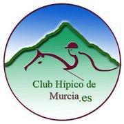 Da comienzo el Campeonato Absoluto de la Región de Murcia 2011 en la disciplina ecuestre de Salto de Obstáculos - 2, Foto 2
