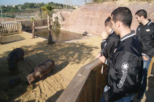 ElPozo Murcia Fútbol Sala apadrina a la cría de hipopótamo de Terra Natura Murcia - 1, Foto 1