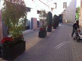 La concejalía de Servicios coloca plantas de pascua y sencillos adornos florales