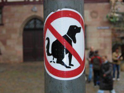 La Policía Local intensifica la vigilancia en cumplimiento de la ordenanza municipal de higiene urbana y tenencia de animales de compañía, Foto 1