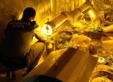 La Guardia Civil desarticula un punto de cultivo, elaboración y venta de marihuana