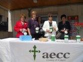 El próximo Domingo de Ramos tendrá lugar la tradicional cuestación de la AECC