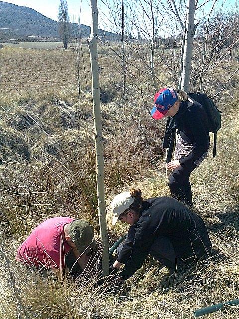 Más de 60 voluntarios contribuyen a la restauración medioambiental del bosque de ribera del río Alhárabe - 1, Foto 1