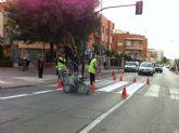 Realizan trabajos de repintado de la señalización horizontal y mantenimiento en la Calle General Aznar