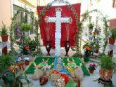 Cruces de Mayo en Santa Lucía