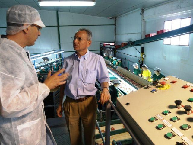 El presidente de la CHS realiza una visita a los regantes de Cieza - 1, Foto 1