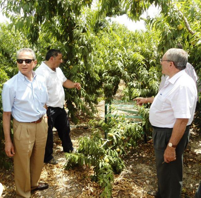 El presidente de la CHS realiza una visita a los regantes de Cieza - 2, Foto 2