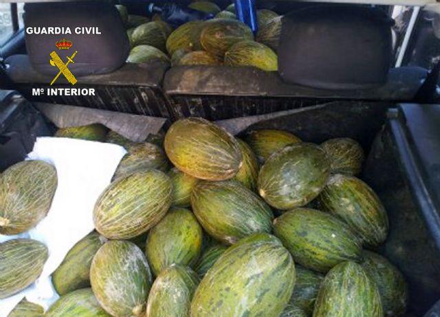 La Guardia Civil sorprende a dos personas transportando fruta sustraída en Cieza - 2, Foto 2