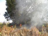 Arde hoy por dos veces en Aljucer una olmeda protegida que impedía la construcción de un polémico plan parcial que se encuentra recurrido en contencioso-administrativo