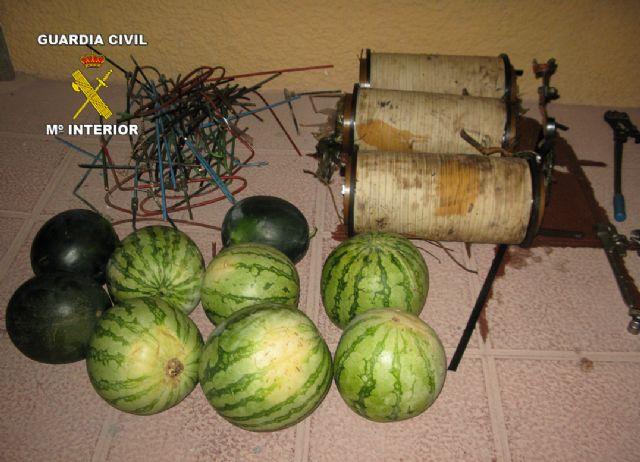 La Guardia Civil sorprende en Totana a tres personas dedicadas a la comisión de robos en explotaciones agrícolas - 2, Foto 2