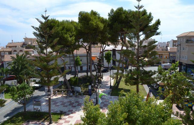 Parques y Jardines poda y retira pinos de la plaza del - 3, Foto 3