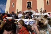 El Ayuntamiento subvenciona festejos populares de 45 asociaciones de vecinos y entidades