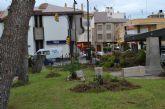 Parques y Jardines poda y retira pinos de la plaza del