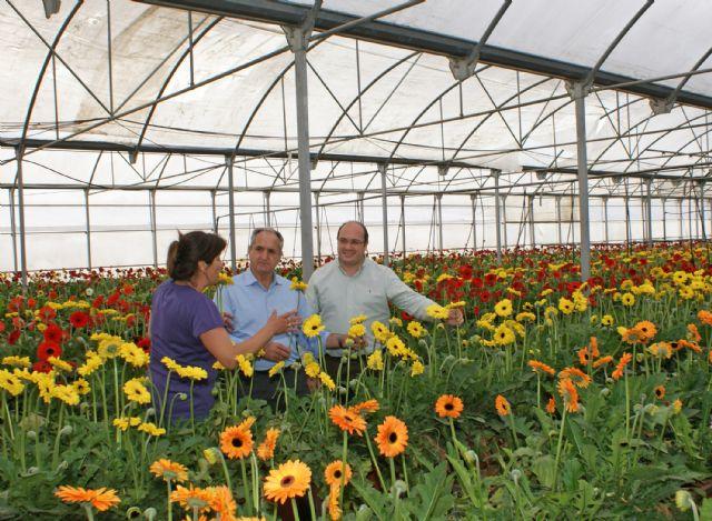 El Ayuntamiento solicita adhesión al Proyecto Agrotur con el que se impulsará la creación de empresas verdes en el sector de la agricultura ecológica - 1, Foto 1