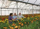El Ayuntamiento solicita adhesión al Proyecto Agrotur con el que se impulsará la creación de empresas verdes en el sector de la agricultura ecológica