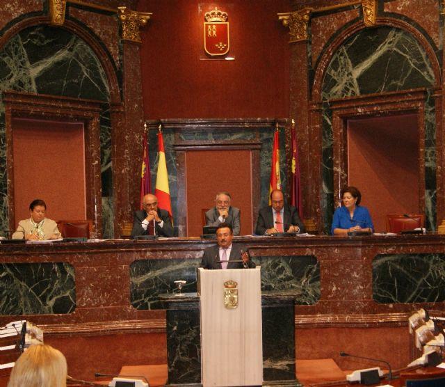 El PSOE pide en la Asamblea la eliminación del tipo impositivo de IVA general  del 21% en flores y plantas ornamentales, Foto 1