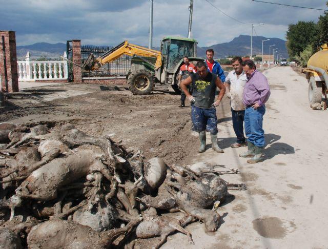 El PSOE alerta de la situación catastrófica en la que se hallan algunas pedanías lorquinas - 1, Foto 1