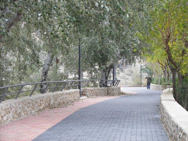 Archena ya forma parte de la Red Española de Ciudades por el Clima - 1, Foto 1