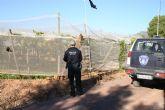 La Polícía Local y Guardia Civil mantienen desde septiembre las actuaciones de vigilancia para evitar los robos en los parrales de uva de mesa