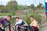 Los escolares se apuntan a la repoblación forestal de la Vía Verde del Noroeste