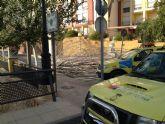Protecci�n Civil retira varios �rboles de la calzada y caminos rurales