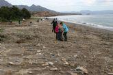 El proyecto 'Expláyate' regenera la Playa del Cabezo de la Pelea con 300 plantas autóctonas