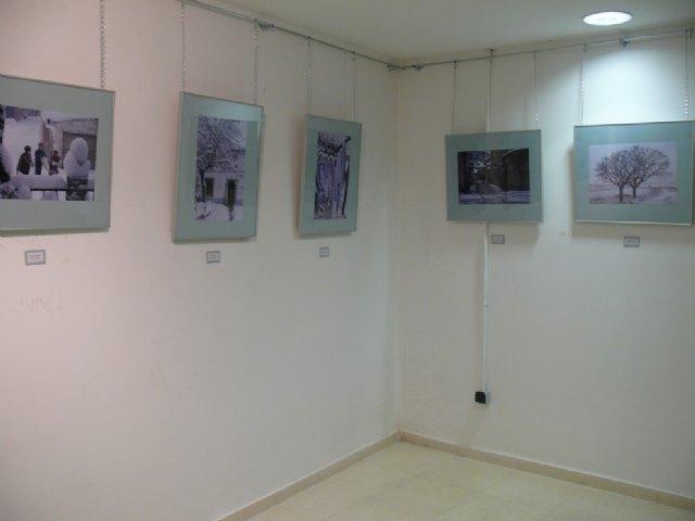 Hasta el 30 de Noviembre, puede visitarse la exposición fotográfica El Sabinar 0611, en el Museo Etnográfico y de Ciencias de la Naturaleza - 2, Foto 2