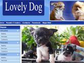 Los cachorros más adorables en la web de Lovely Dog, desarrollada con 'Superweb'
