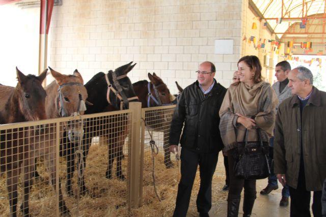 El Alcalde y la Directora General de Ganadería inauguran la tradicional Feria de Ganado Equino de Puerto Lumbreras - 1, Foto 1
