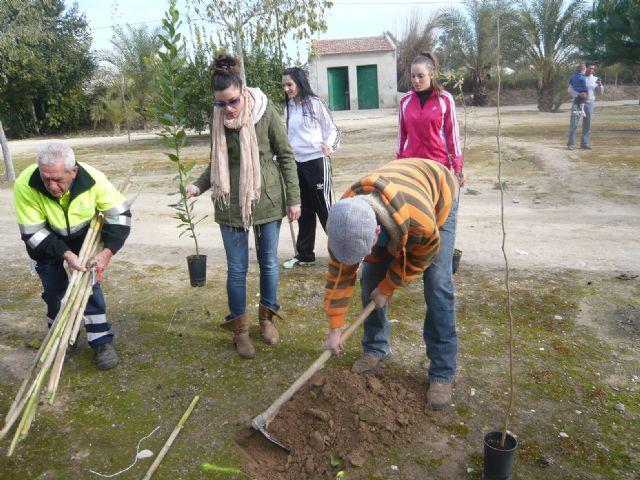 Trabajadores de Desguace París participan en la reforestación de un paraje en el Canal de La Algaida - 2, Foto 2