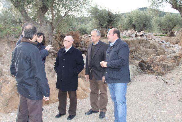 Se pondrá en marcha un Plan de Actuación para la recuperación medioambiental del Cabezo de la Jara - 2, Foto 2
