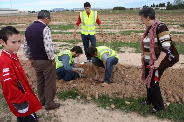 Éxito de participación en la plantación de pinos para crear el primer pulmón urbano de Torre-Pacheco - 1, Foto 1
