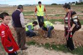 Éxito de participación en la plantación de pinos para crear el primer pulmón urbano de Torre-Pacheco