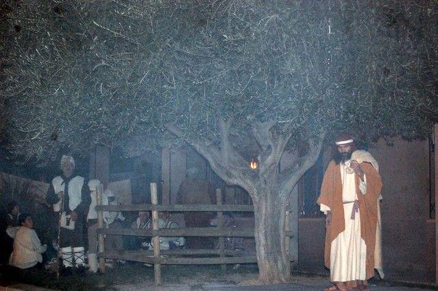 El Belén Viviente marca el punto culminante de la Navidad de Alguazas - 3, Foto 3