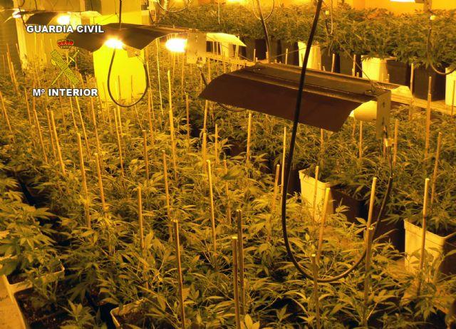 La Guardia Civil desmantela una gran plantación domiciliaria de marihuana que había dejado sin suministro eléctrico a sus vecinos - 1, Foto 1