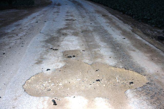 IU denuncia el estado calamitoso y peligroso de los caminos rurales en Totana, Foto 1