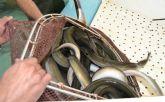 La cofradía de pescadores estima capturar más de 26.000 kilos de anguilas en la campaña de este año