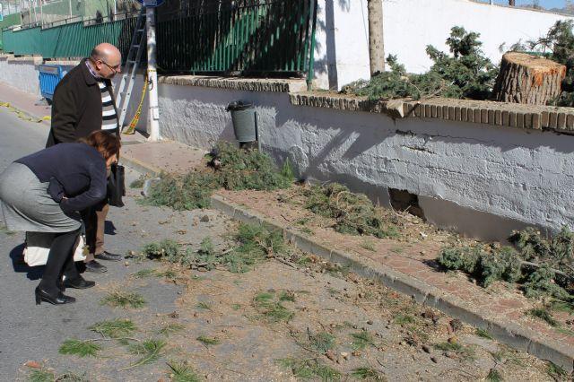 El ayuntamiento arreglará el muro del colegio Francisco Caparrós - 1, Foto 1