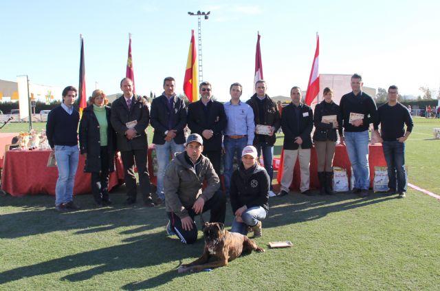 El III Concurso Nacional Canino exhibe 500 ejemplares de más de 50 razas caninas en Puerto Lumbreras - 1, Foto 1