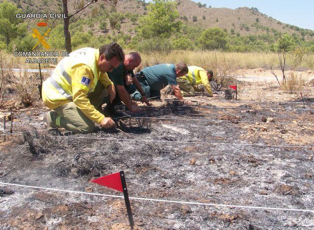 La Guardia Civil de Albacete detiene a una persona por un delito de incendio en una zona forestal - 1, Foto 1