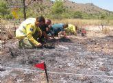 La Guardia Civil de Albacete detiene a una persona por un delito de incendio en una zona forestal