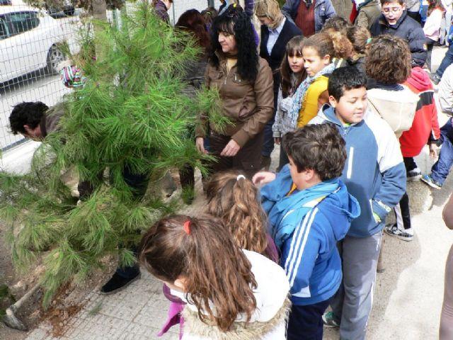 Los colegios de Mazarrón se divierten reforestando los pinos de la campaña de Navidad - 1, Foto 1