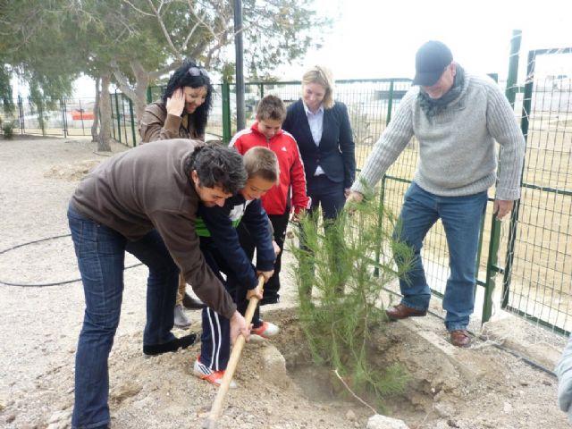 Los colegios de Mazarrón se divierten reforestando los pinos de la campaña de Navidad - 3, Foto 3