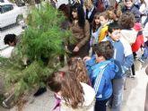 Los colegios de Mazarr�n se divierten reforestando los pinos de la campaña de Navidad